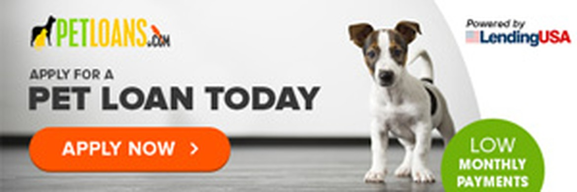 Apply Now - Pet Loans