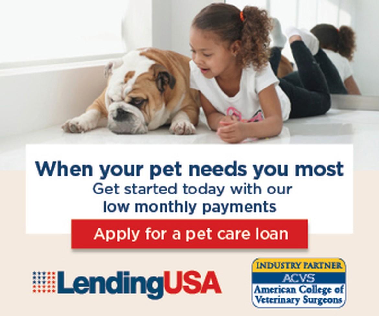 Apply Now - Pet Loans