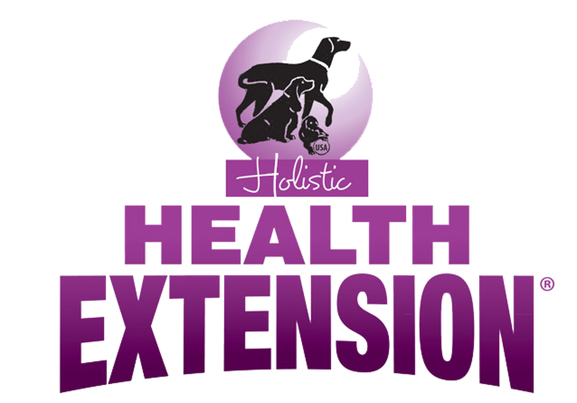 Health Extension
